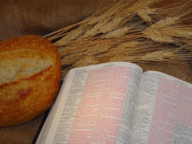 NYEEM YES XUS COV LUS. Bible110
