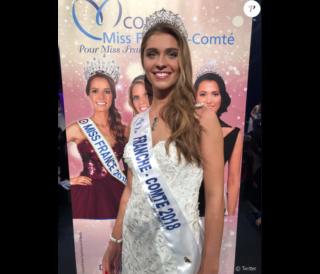 Election de Miss France 2019 43989210