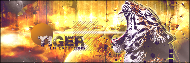 LM CREATIONS.♥ Tiger12