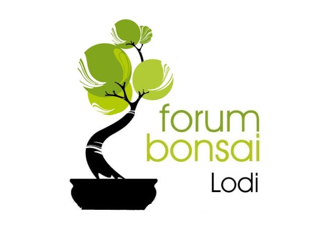 Nuovo logo - Pagina 2 Lodilo10