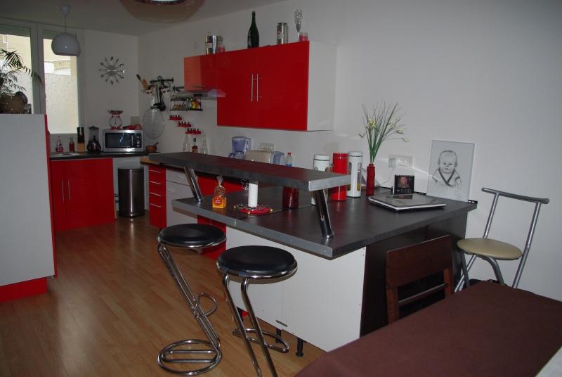 Décoration pièce unique salon/cuisine Imgp7513