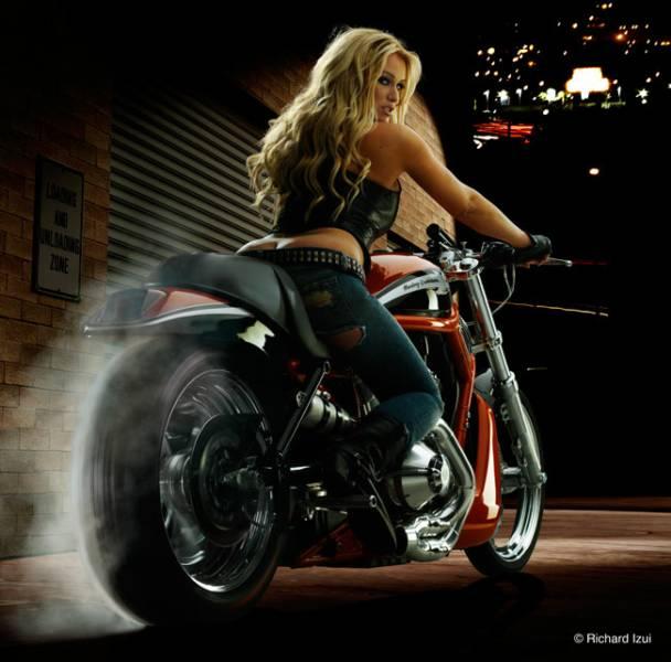 anniv à fêter - Page 3 Harley12