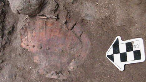 Découverte en Galilée d'un festin datant de 12.000 ans  Media_12