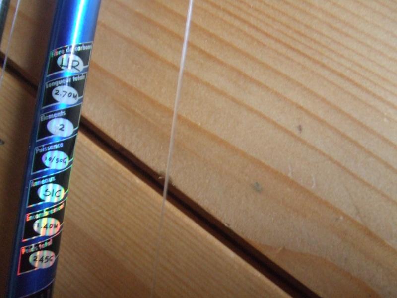 Matériel silure pour peche du bord Dscf5111