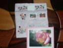 ***PHOTOS - enveloppes brodées avec des roses*** Sac_re12