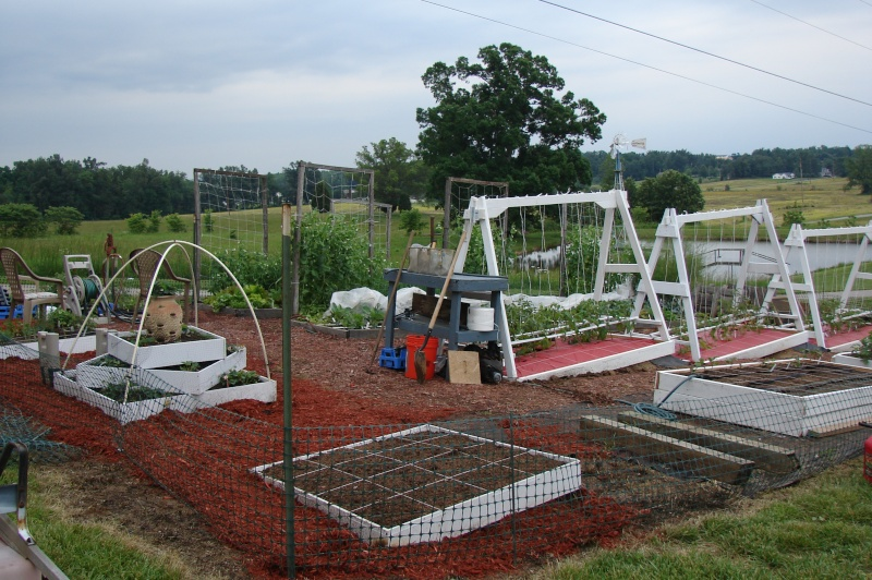 New beds and new trellis pictures from Knob Hill Dsc03612