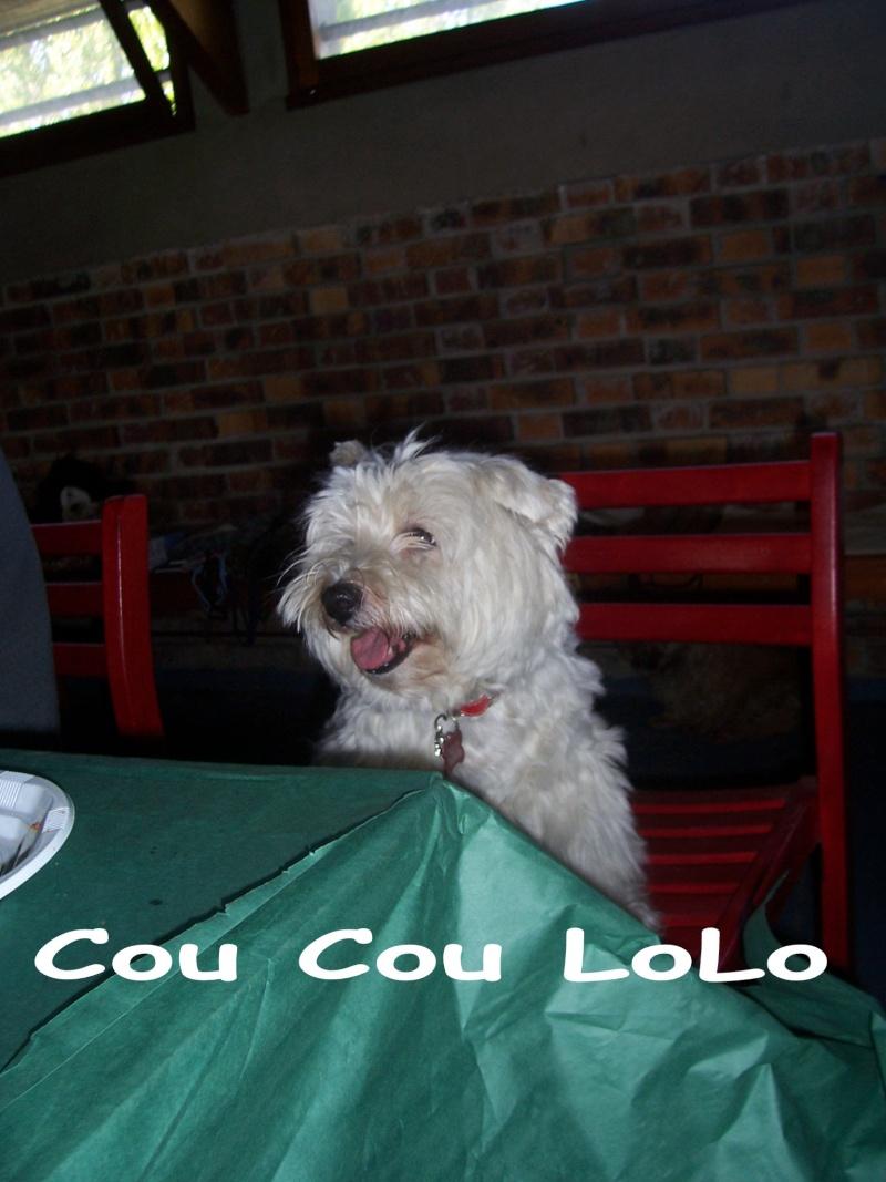 ---A G-----09/10/2010-------LES TEMPS FORTS EN PHOTOS------- - Page 7 100_2910