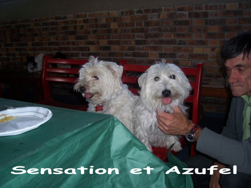 ---A G-----09/10/2010-------LES TEMPS FORTS EN PHOTOS------- - Page 7 100_2911