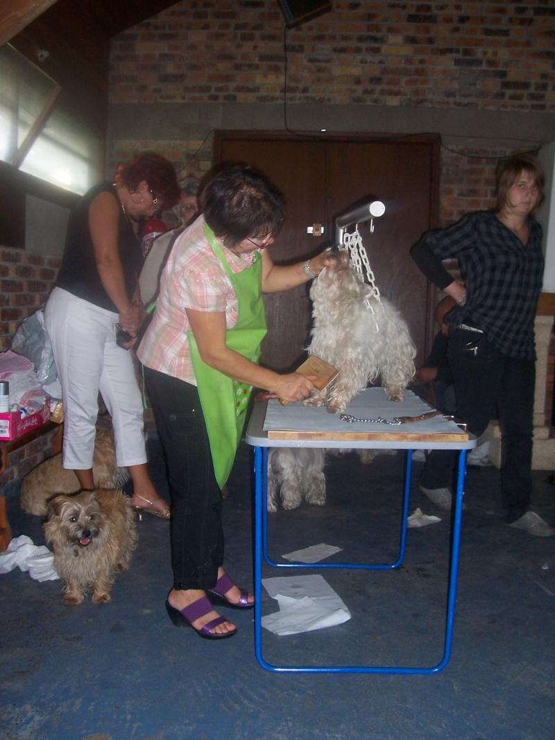 ---A G-----09/10/2010-------LES TEMPS FORTS EN PHOTOS------- - Page 7 100_2913
