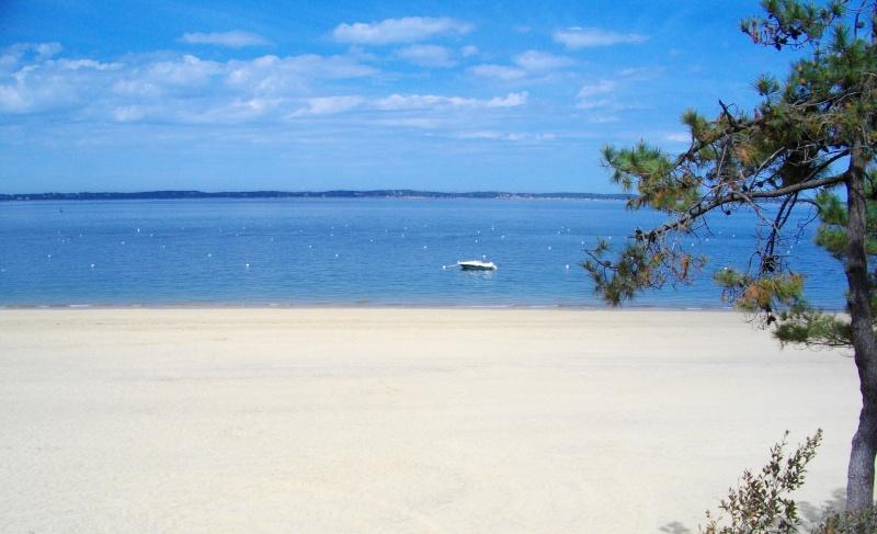 Photographie : Arcachon plage Imgp0611