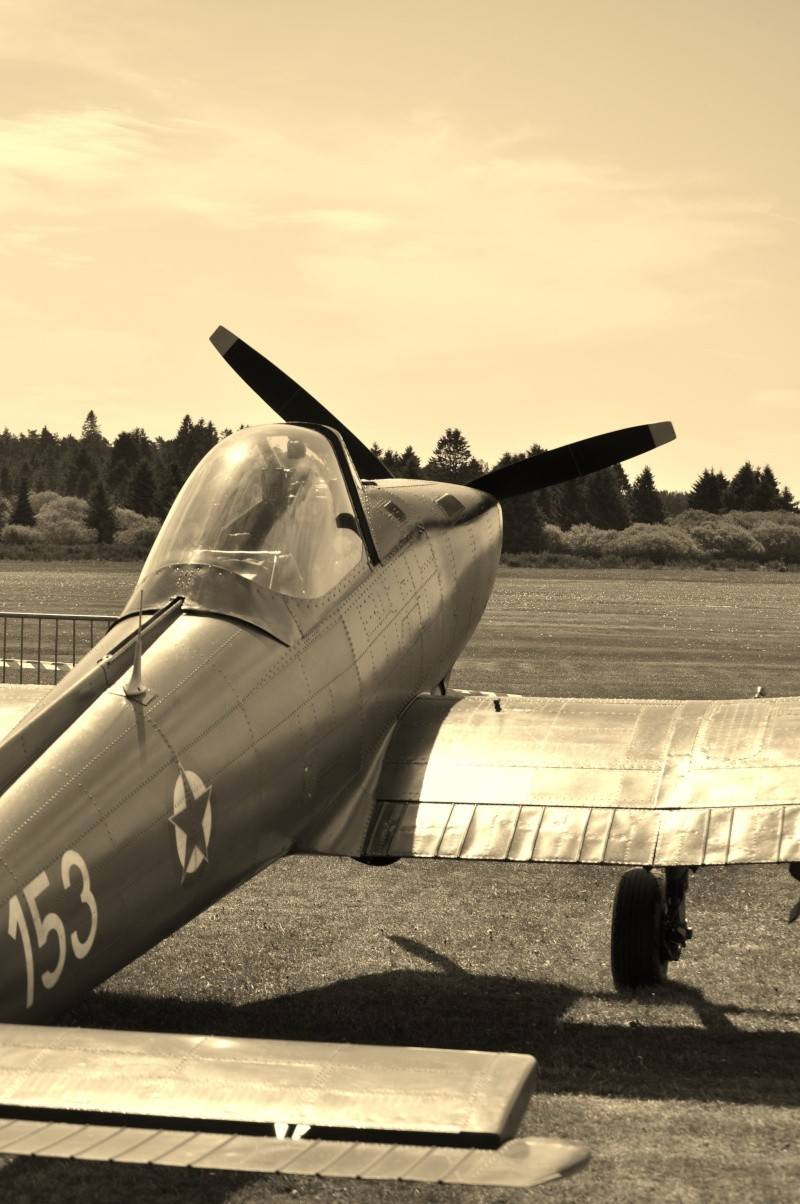 Meeting de l aérodrome de St Hubert  Dsc_0326