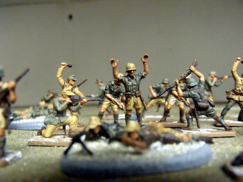 Meine erste Armee entsteht - Seite 3 Dscf0013