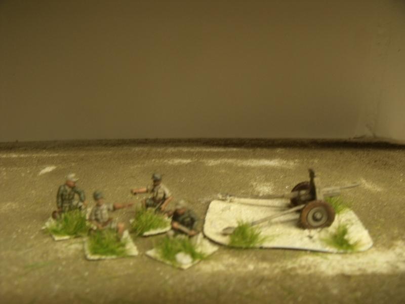 Meine erste Armee entsteht - Seite 3 Dscf0423