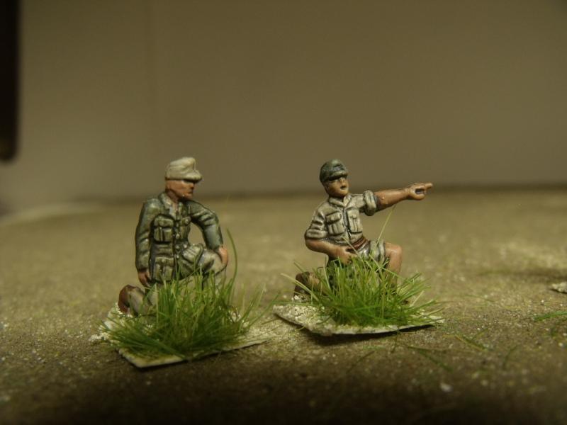 Meine erste Armee entsteht - Seite 3 Dscf0424
