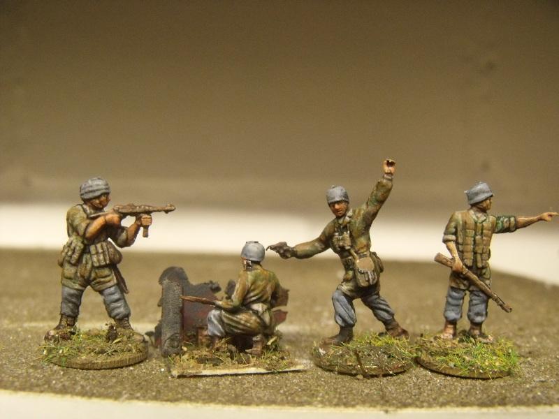 Meine erste Armee entsteht - Seite 2 Dscf9715