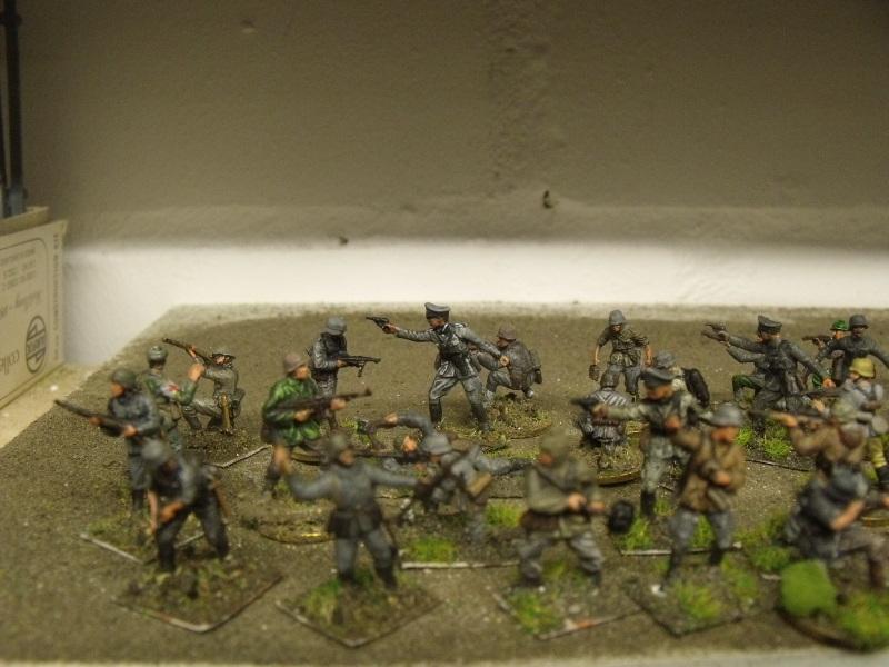 Meine erste Armee entsteht - Seite 2 Dscf9811
