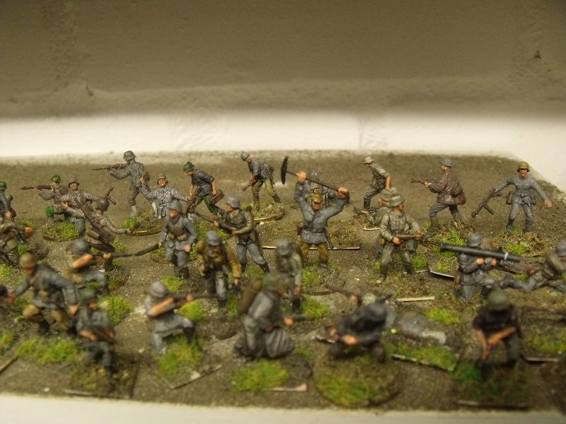 Meine erste Armee entsteht - Seite 2 Dscf9812