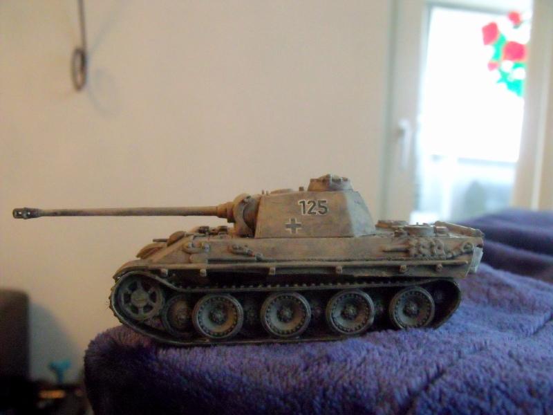 Meine erste Armee entsteht - Seite 3 Dscf9822