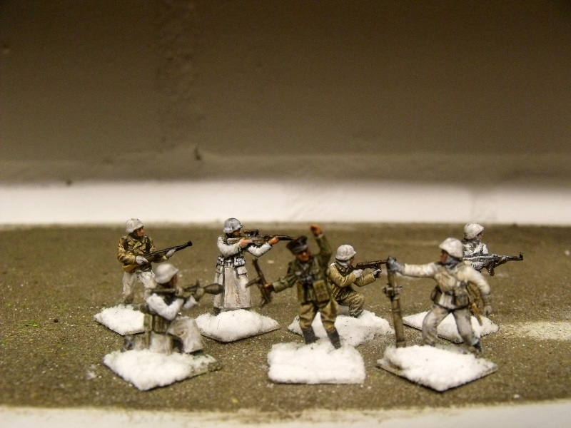Meine erste Armee entsteht - Seite 3 Dscf9828