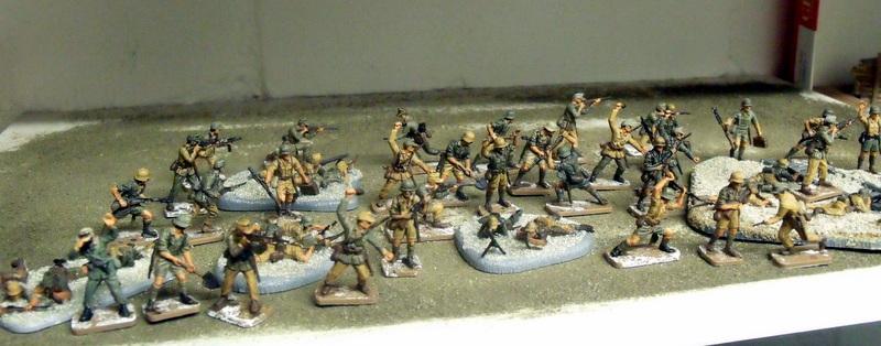 Meine erste Armee entsteht - Seite 3 Dscf9930