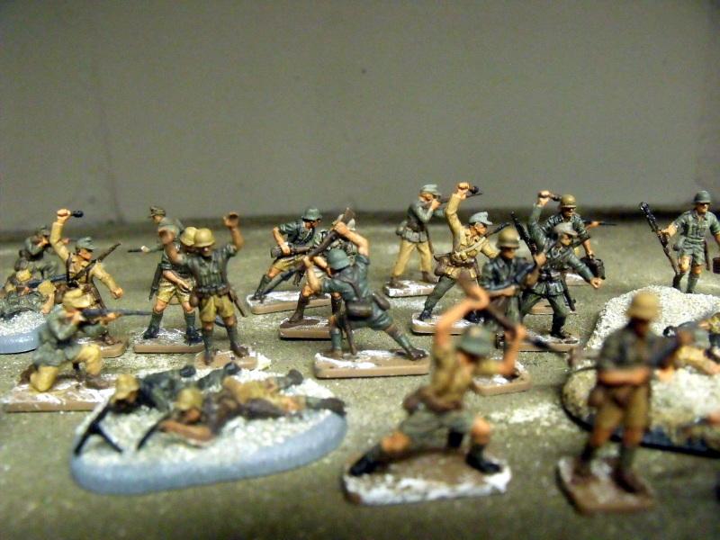 Meine erste Armee entsteht - Seite 3 Dscf9933