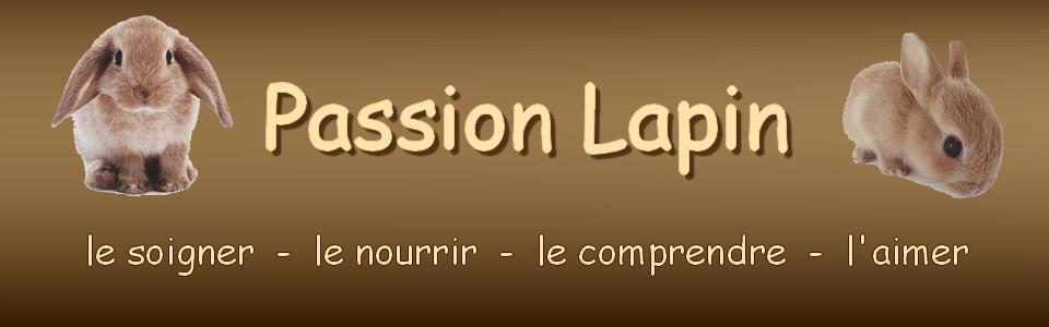 Passion Lapin