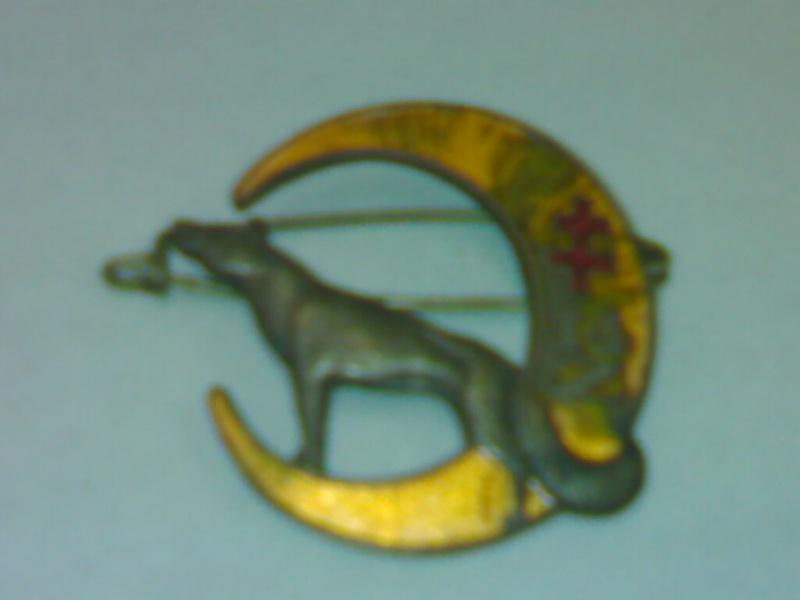 Insigne du 14ème Zouaves 09102012