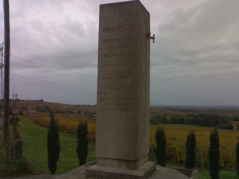 Stèle Région Beaujolais, Villefranche sur Saône 30102010