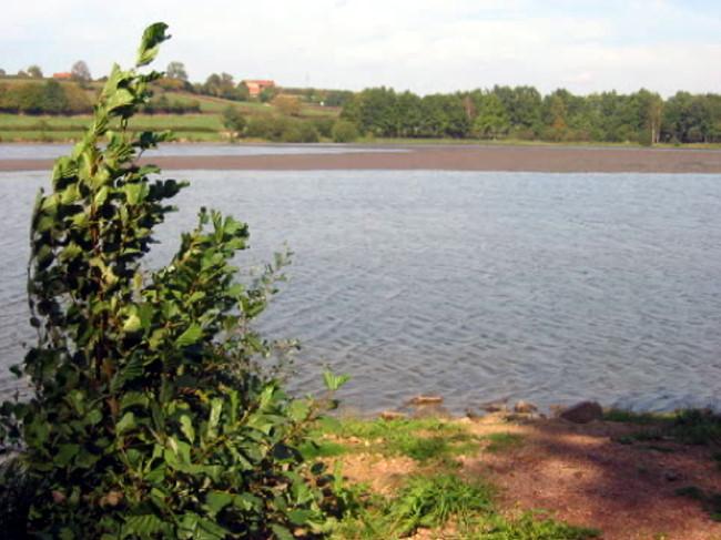 Montrez nous vau étang  =) Lac-du14