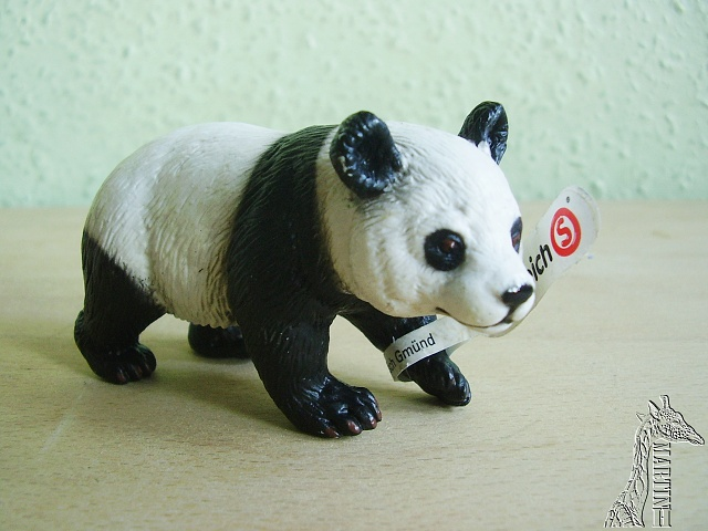 Martin's Schleich newcomers! - Page 3 P1010201