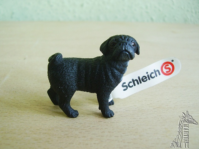 Martin's Schleich newcomers! - Page 3 P1010206