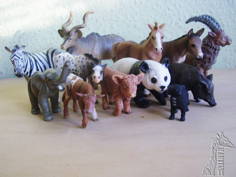 Martin's Schleich newcomers! - Page 3 P1010209