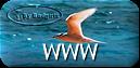 http://mes-themes.forumactif.com
