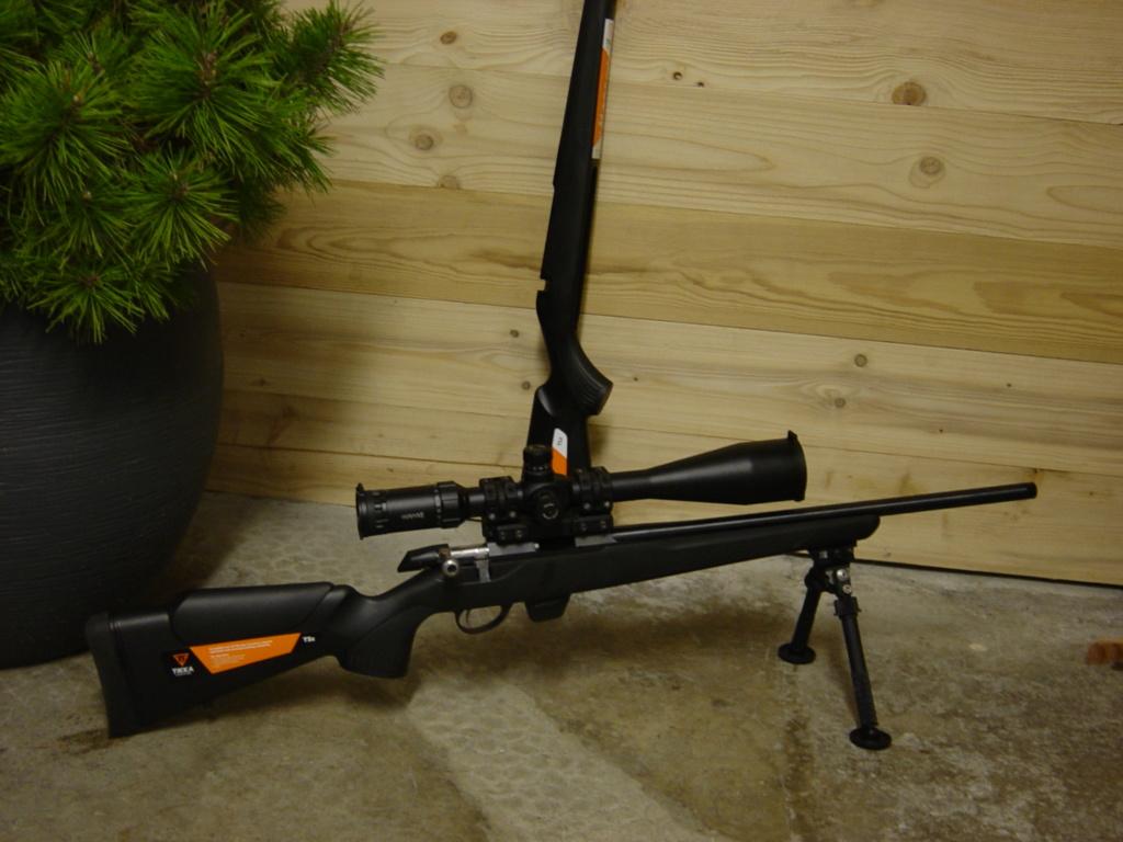 Carabines de TLD Dsc00015
