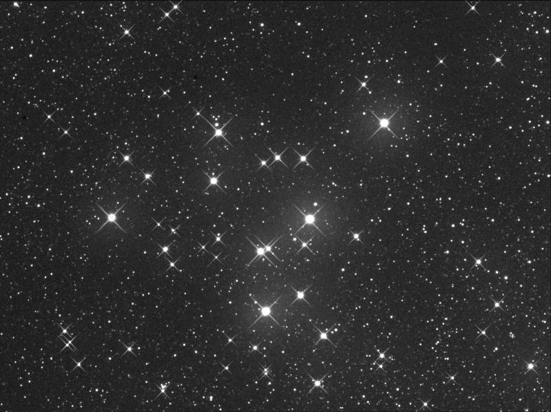 un peu de douceur dans ce monde de brutes M39nua10