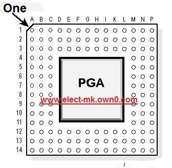 Integrated circuit  PGA Pga_pi10