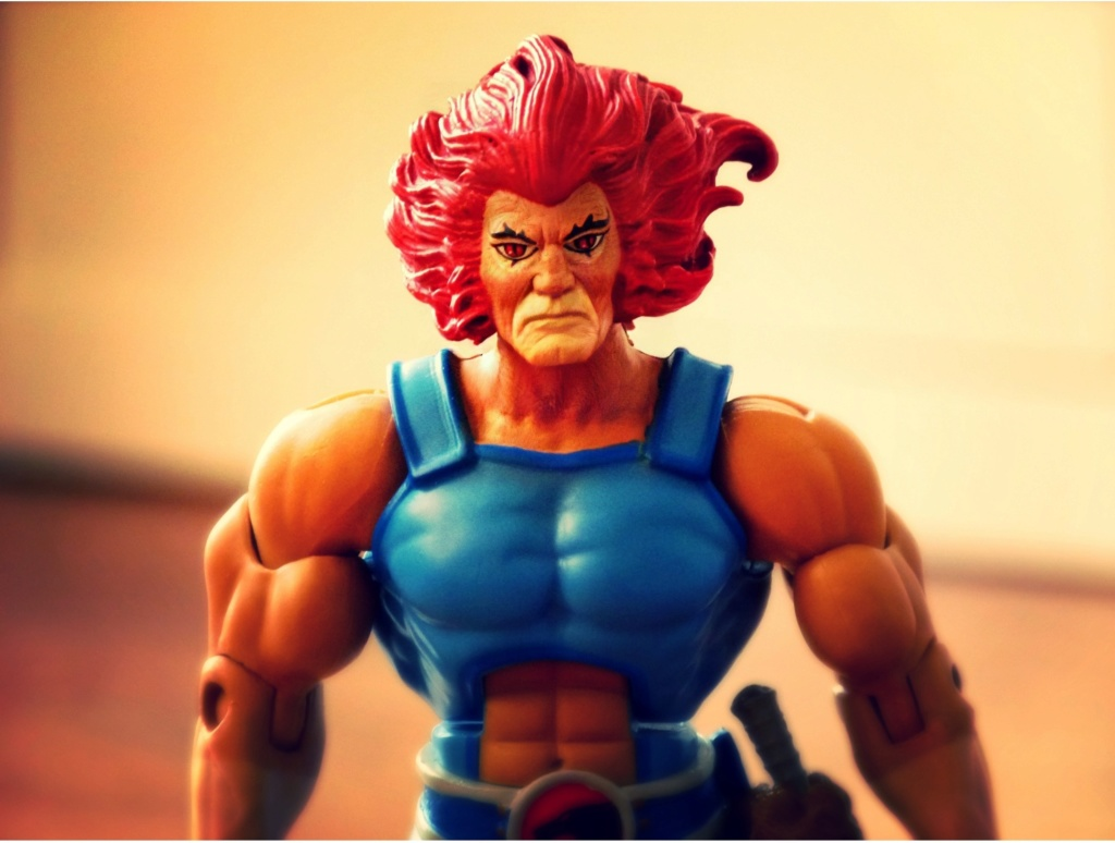 Cosmocats / Thundercats (Super 7) nouvelle gamme 20XX  Img_2014