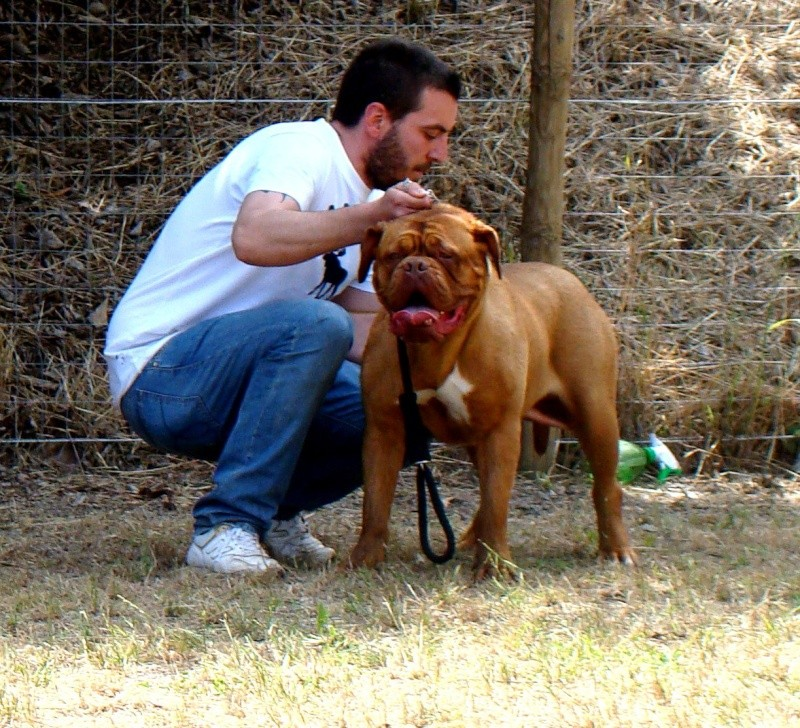 Giunone,hello from Italy (12 months) 25943411