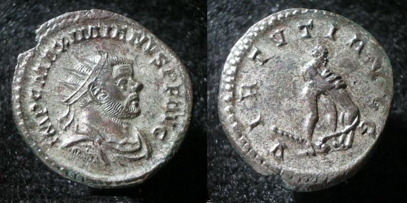 Le IIIème siècle d'aureus78 - Page 2 Maximi11