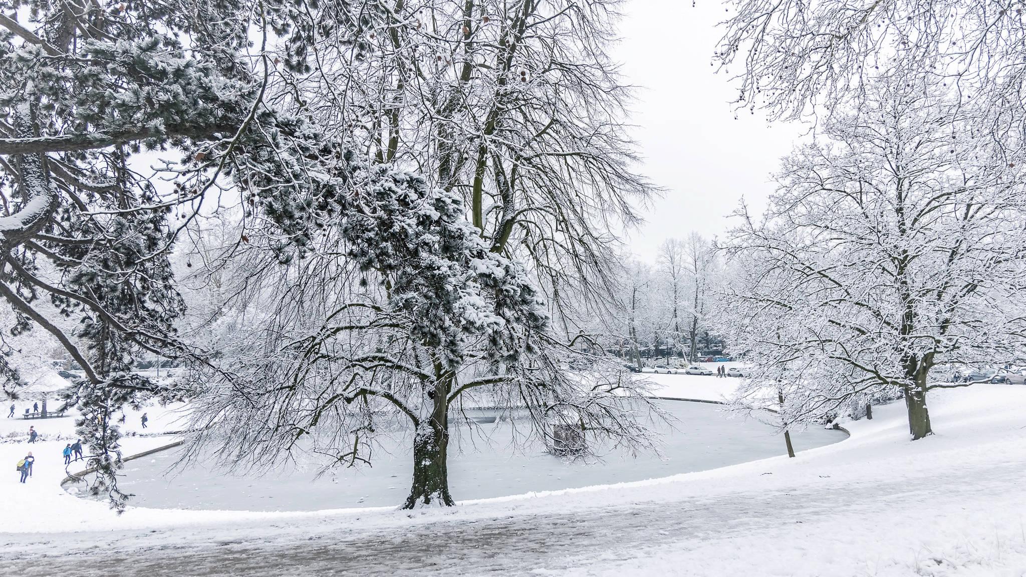 souvenir d'hiver 23012010