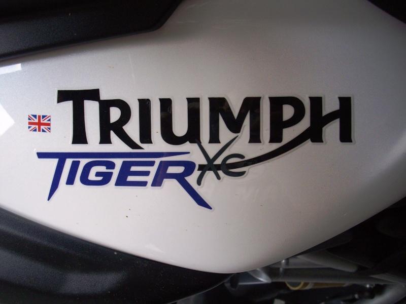 Duel BMW F 800 GS Vs Triumph Tiger 800 XC  - Page 2 Imgp0910