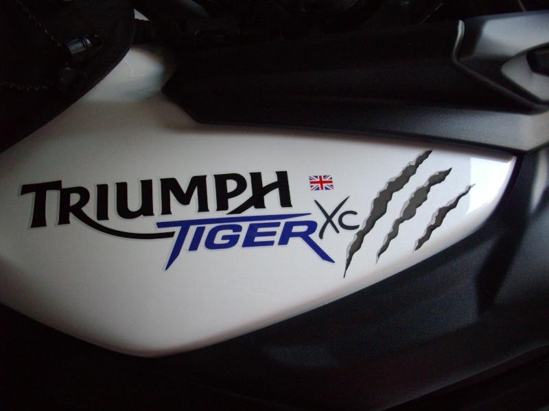Duel BMW F 800 GS Vs Triumph Tiger 800 XC  - Page 2 Imgp0911