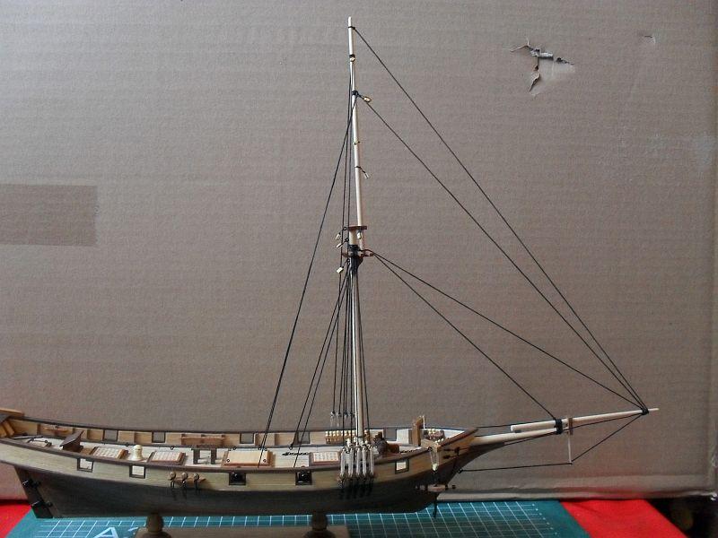 Albatros von Constructo 112