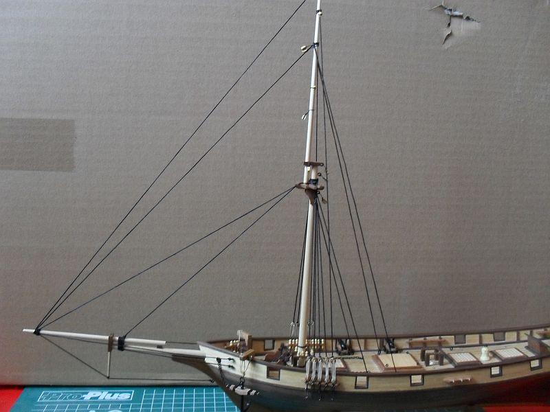 Albatros von Constructo 411