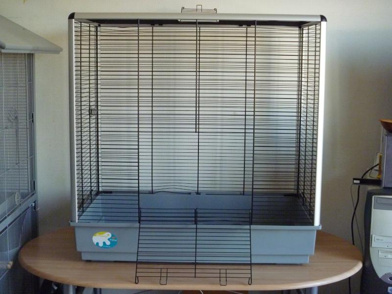 Vends cage Jenny KD (54) + envoi. P1010116