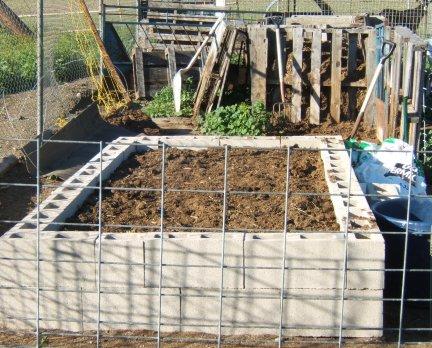 My new garden and helpers Garden11