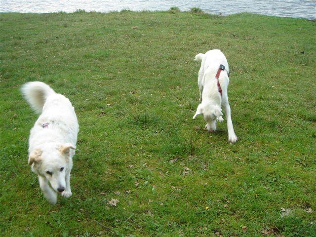 Riesenbaby Pupo verwandelt sich in Liam - vermittelt Dsc04919