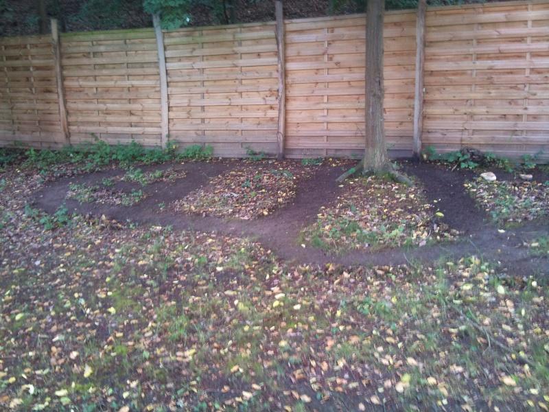 Un petit parcours trial dans mon jardin Dsc_0211