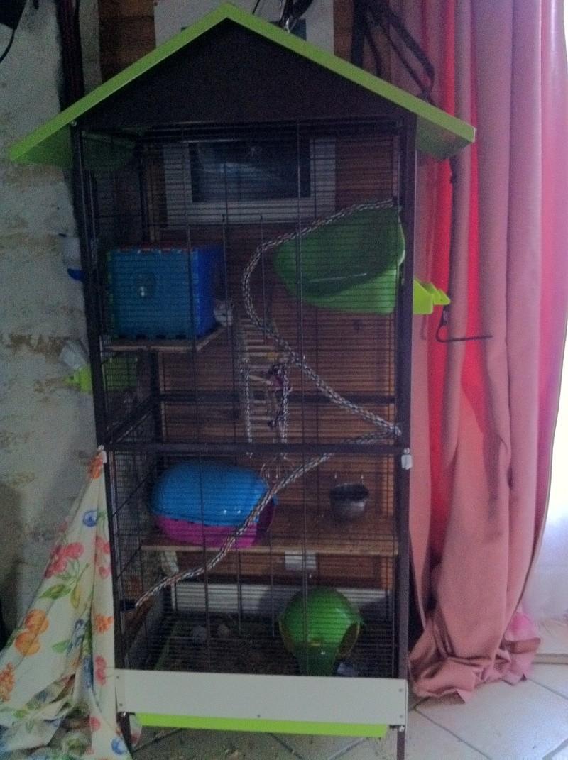 Vend cage mary ferplast et volière juliette Img_0210