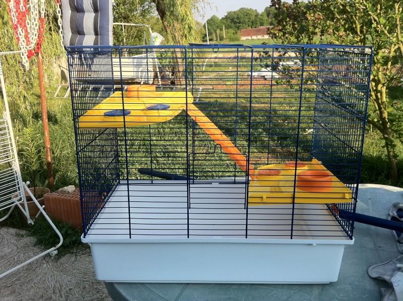 vend cage avec accessoires Img_0211